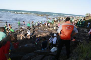 Total de óleo recolhido nas praias de Pernambuco chega a 257 toneladas
