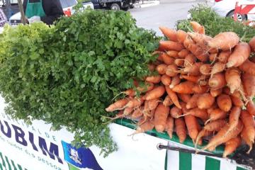 Feira da Agricultura Familiar de Base Agroecológica de Surubim completa um ano
